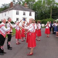Invicta Morris crop