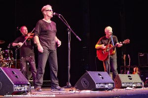 SDFF14 - Oysterband copy